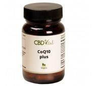 CBD Vital Coenzym Q10 plus Kapseln / 60 Kapseln