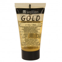 Wellion Flüssigzucker Gold - Invertzuckersirup / 1 Tube